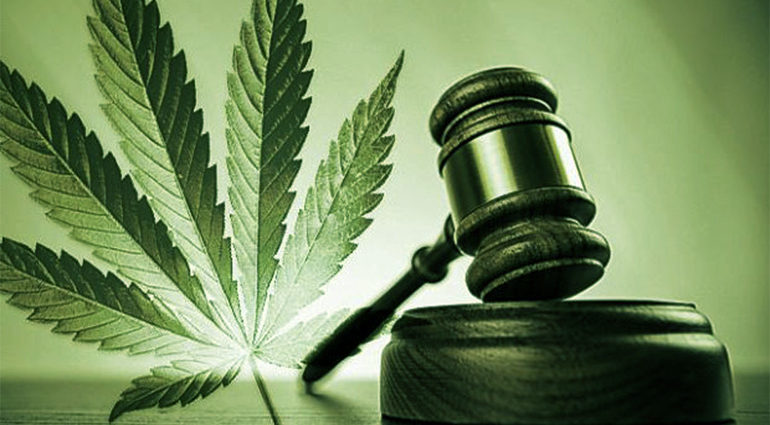 A green-tinted illustration showing a courtroom gavel and a marijuana leaf.